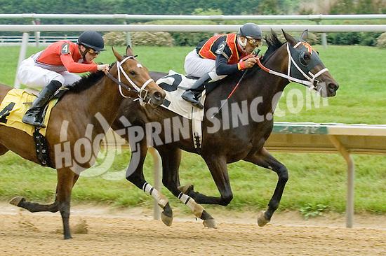 Touring Hong Kong winning at Delaware Park on 5/30/12