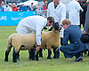 29.05.2014; Ipswich: PRINCE HARRY VISITS SUFFOLK SHOW<br /> Prince Harry visits the annual show, where he viewed livestock in the parade ring and watched a parade of Royal British Legion Standards.<br /> Mandatory Photo Credit: &copy;Dias/NEWSPIX INTERNATIONAL<br /> <br /> **ALL FEES PAYABLE TO: &quot;NEWSPIX INTERNATIONAL&quot;**<br /> <br /> PHOTO CREDIT MANDATORY!!: NEWSPIX INTERNATIONAL(Failure to credit will incur a surcharge of 100% of reproduction fees)<br /> <br /> IMMEDIATE CONFIRMATION OF USAGE REQUIRED:<br /> Newspix International, 31 Chinnery Hill, Bishop's Stortford, ENGLAND CM23 3PS<br /> Tel:+441279 324672  ; Fax: +441279656877<br /> Mobile:  0777568 1153<br /> e-mail: info@newspixinternational.co.uk