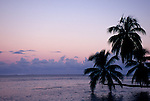 Opunohu Bay, Moorea, French Polynesia; sunrise views of Opunohu Bay with palm trees stretched out over the water , Copyright © Matthew Meier, matthewmeierphoto.com All Rights Reserved