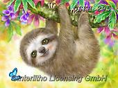 Kayomi, CUTE ANIMALS, LUSTIGE TIERE, ANIMALITOS DIVERTIDOS, paintings+++++,USKH295,#ac#, EVERYDAY ,sloth ,puzzle,puzzles