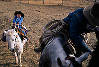 Young cowboy pulls back to stop his pony from moving in the corral on the Dixie Valley Ranch in a remote part of Lassen County.