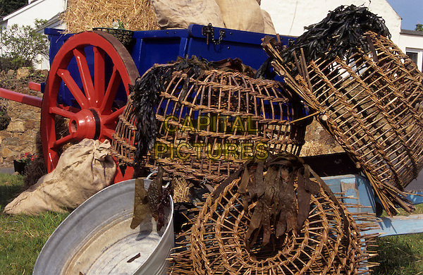 Lobster pots and seaweed beside a blue cart with red wheels, Guernsey, Channel Islands