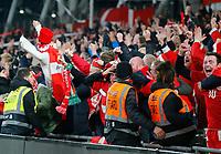 18th November 2019; Aviva Stadium, Dublin, Leinster, Ireland; European Championships 2020 Qualifier, Ireland versus Denmark; The Danish fans celebrate their teams goal for 0-1 in the 73rd minute  - Editorial Use