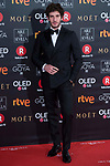 Quim Gutierrez attends red carpet of Goya Cinema Awards 2018 at Madrid Marriott Auditorium in Madrid , Spain. February 03, 2018. (ALTERPHOTOS/Borja B.Hojas)