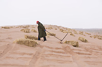 A Chinese afforestation worker prepares the ground before poking straw partway into the sand, forming a pattern of small squares in the desert areas of Minqin county in Gansu province, October 2016. The grid like network of straw fences break the force of the wind at ground level, stopping dune movement by confining the sand within the squares of the grid. Minqin county is located in between the Tengger Desert and the Badain Jaran Desert.