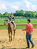 Hobo Ridge winning at Delaware Park on 8/12/15