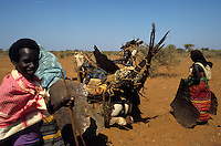 Nomads loading their camels