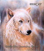 Sandi, REALISTIC ANIMALS, REALISTISCHE TIERE, ANIMALES REALISTICOS, paintings+++++dreamscapewolfII,USSN47,#a#, EVERYDAY ,wolf,wolves ,puzzles