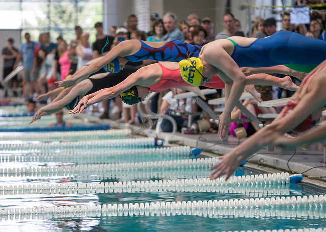 The start of the girls 3A 50 yard freestyle race during the State Swimming Meet in Carson City on Saturday, May 20, 2017.
