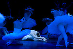 "English National Ballet performing Derek Deane's production of ""Swan Lake"" in the round at the Royal Albert Hall"
