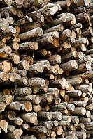 Stacks of rough lumber, Vermont, USA