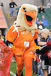 16 May 2008: Swoops, the Carolina Railhawks mascot. The Atlanta Silverbacks Women defeated the Carolina Railhawks Women 5-0 at WakeMed Stadium in Cary, NC in a 2008 United Soccer League W-League regular season game.