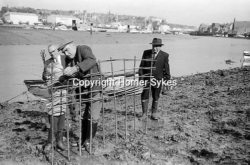 Whitby Penny Hedge or Horngarth,  Whitby North Yorkshire. England 1973.<br />