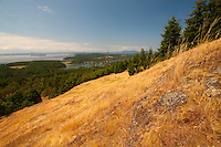 Young Hill, San Juan Island, Washington, US