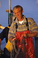 Europe/France/Corse/2A/Corse-du-Sud/Golfe d'Ajaccio: Pêche à l'aube avec François Sallini et Michel Serreri devant les iles Sanguinaires [Non destiné à un usage publicitaire - Not intended for an advertising use]