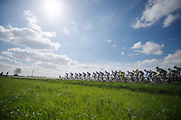 peloton under the sun<br /> <br /> 102nd Scheldeprijs 2014