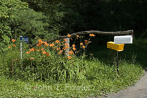 Rural mailbox, newspaper delivery box