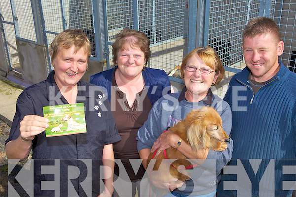 IT'S A DOG'S LIFE: The team at the Kingdom Boarding Kennels in Listowel who will be hosting new dog training sessions from September, l-r: Anita Kardol, Joan Long, Gerry Wallace, Donie O'Sullivan.