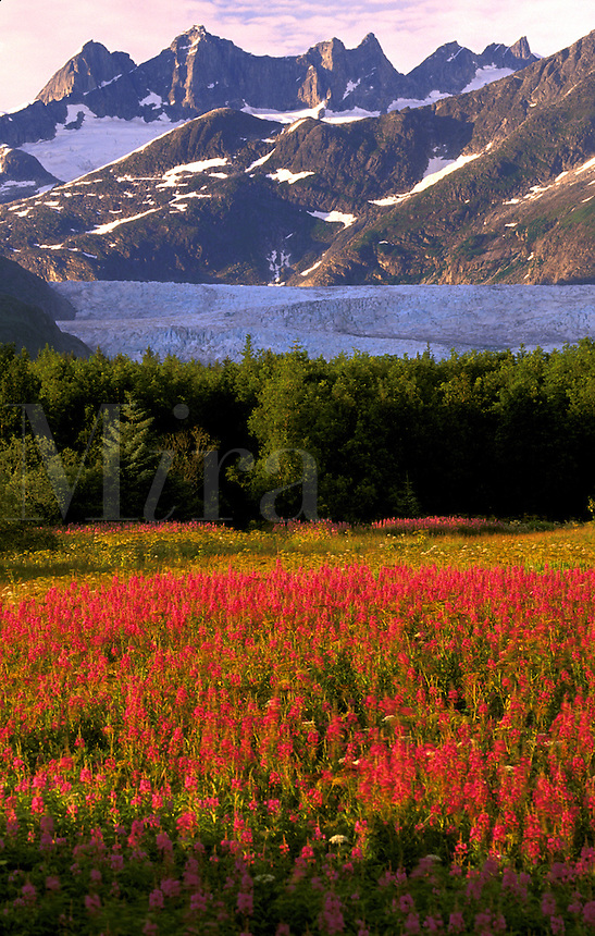 Brotherhood Park.  Southeast, Juneau, Alaska.