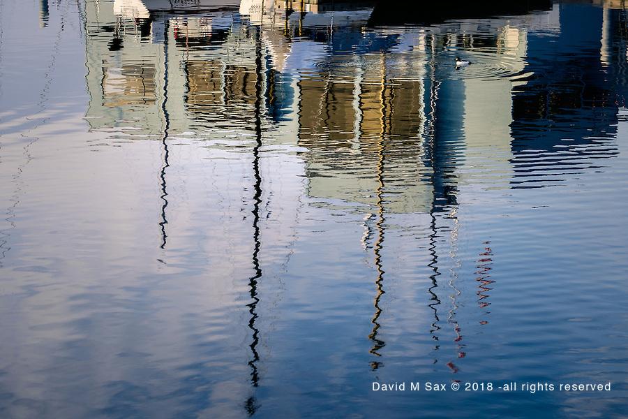2.11.17 - Dockside Reflection...