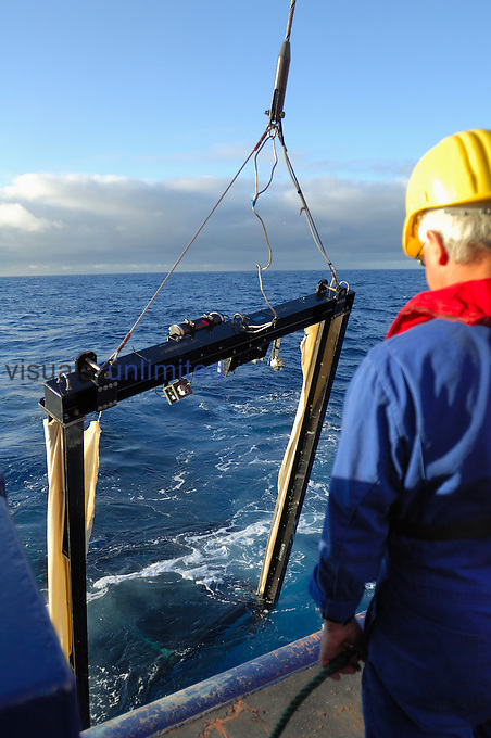 Scientist lifting collection net from ocean.