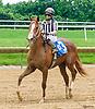 Whereshetoldmetogo winning at Delaware Park on 6/8/17