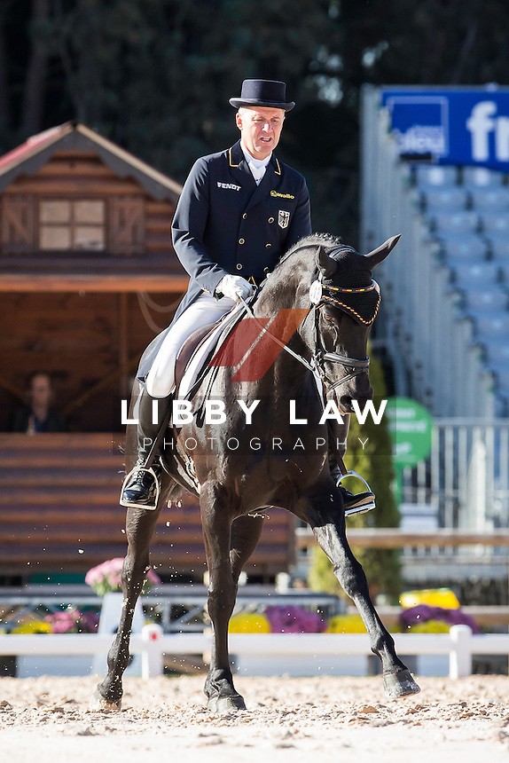 GER-Andreas Dibowski (FRH BUTTS AVEDON) INTERIM-1ST: CCI4* DAY ONE OF DRESSAGE: 2014 FRA-Les Etoiles de Pau (Thursday 23 October) CREDIT: Libby Law COPYRIGHT: LIBBY LAW PHOTOGRAPHY - NZL