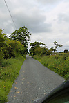 Small two way country roads on our way to Granlahan, County Roscommon, Ireland on Tuesday, June 25th 2013. (Photo by Allison Garfinkel)