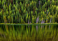 Pine trees are reflected in String Lake at Grand Teton National Park, Wyoming