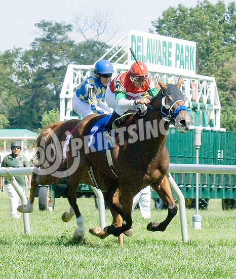 Francesco Punch winning at Delaware Park on 9/10/12