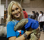 Natalie Vegel holds Nessie, a 15 pound black throat monitor at the Reno Repticon event held on Sunday afternoon, February 10, 2013 at the Reno Livestock Events Center in Reno, Nevada.