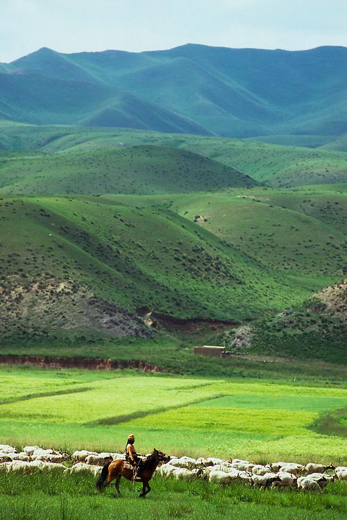 Grasslands above Ginja, Qinghai, China, 2007