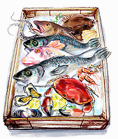 Variation of fish and seafood on tray