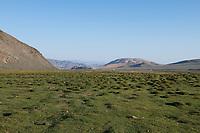Mongolia, Bayan-Ulgii, Ulgii, Altai Mountains near Tsambagarav mountain.
