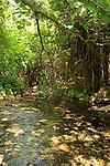 Israel, Upper Galilee, Ein Yakim in Wadi Amud
