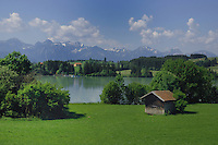 Cattle huts and marina against the background of the alps.Forggensee lake close to Neuschwanstein castle. Bavaria, South Germany.
