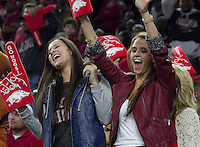 Arkansas Democrat-Gazette/BENJAMIN KRAIN --12/29/14--<br /> Razorback fans celebrate Arkansas's Texas Bowl victory Monday night in Houston