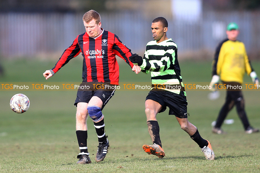 Lakeview (Red&Black Stripes) v Flamengo all Stars (Black&Green Hoops)-Seven Kings Park - Essex Sunday Football Combination - 19/02/12 - MANDATORY CREDIT: George Phillipou/TGSPHOTO - Self billing applies where appropriate - 0845 094 6026 - contact@tgsphoto.co.uk - NO UNPAID USE.