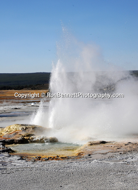 """Yellowstone, Montana state located in the Western United States, Rocky Mountains, """"Treasure State,"""" """"Big Sky Country,"""" """"Land of the shining Mountains,"""" """"The Last Best Place,"""" Glacier National Park, Battle of Little Bighorn, Yellowstone National Park, ghost town, barn, wagons, wagon, Fine Art Photography by Ron Bennett, Fine Art, Fine Art photo, Art Photography,"""