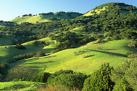 Mt. Burdell, Novato, California