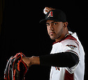 Arizona Diamondbacks Miller Diaz (67) during photo day on February 28, 2016 in Scottsdale, AZ.