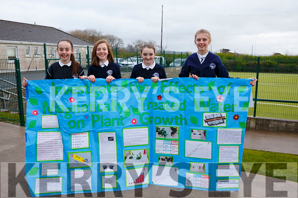 The students of Spa National School displaying their science project that was part of the recent Primary Science Fair, l-r, Ciara Dowling, Laura Reilly, Molly Sheehy and Rosie Falvey.