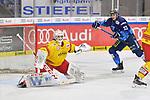Tim Wohlgemuth (Nr.33 - ERC Ingolstadt) vor Torwart Mathias Niederberger (Nr.35 - Duesseldorfer EG) beim Spiel in der DEL, ERC Ingolstadt (dunkel) - Duesseldorfer EG (hell).<br /> <br /> Foto © PIX-Sportfotos *** Foto ist honorarpflichtig! *** Auf Anfrage in hoeherer Qualitaet/Aufloesung. Belegexemplar erbeten. Veroeffentlichung ausschliesslich fuer journalistisch-publizistische Zwecke. For editorial use only.