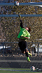 Wooster Colts goalie Jose Fletesltips the ball over the net during the 2013 NIAA Division I Northern Region Boys Soccer Championship played against Spanish Springs on Saturday afternoon, November 9, 2013 at Bishop Manogue High School in Reno, Nevada.