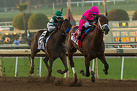 ARCADIA, CA  DECEMBER 26:  #1 City of Light, ridden by Drayden Van Dyke, in the stretch of the Malibu Stakes (Grade l) on December 26, 2017 at Santa Anita Park in Arcadia, CA. (Photo by Casey Phillips/ Eclipse Sportswire/ Getty Images)