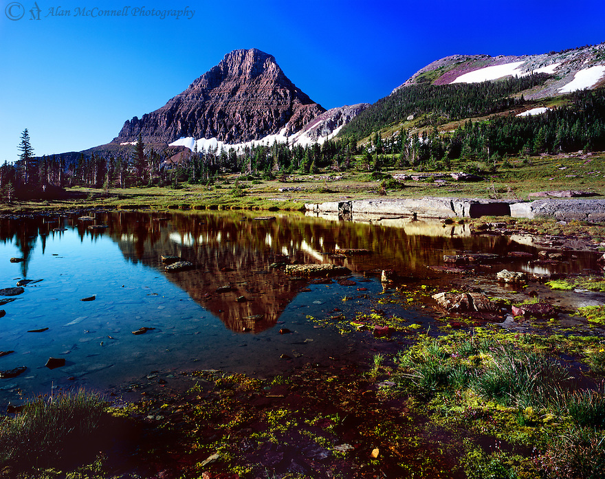 &quot;Sunrise at Logan Pass&quot;<br />