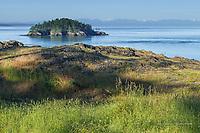 Deception Island and Olympic Mts from Rosario Head, Washington