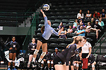 Tulane Volleyball falls to UConn, 3-1.