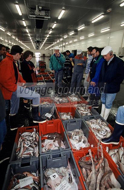 Europe/France/Pays de la Loire/85/Vendée/Les Sables-d'Olonne: La Criée