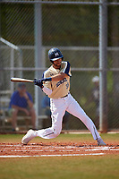 Mount St. Mary's Mountaineers center fielder Sebastian Mieses (39) bats during a game against the Ball State Cardinals on March 9, 2019 at North Charlotte Regional Park in Port Charlotte, Florida.  Ball State defeated Mount St. Mary's 12-9.  (Mike Janes/Four Seam Images)